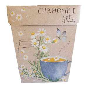SOW 'N SOW - Gift Of Seeds Chamomile 1