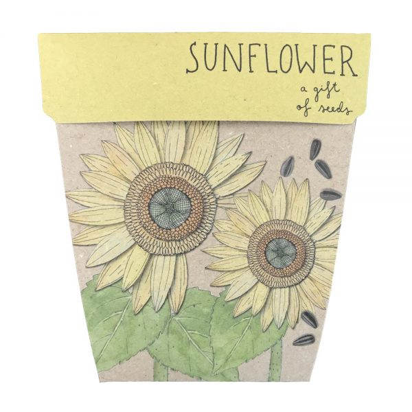 SOW 'N SOW Gift Of Seeds Sunflower