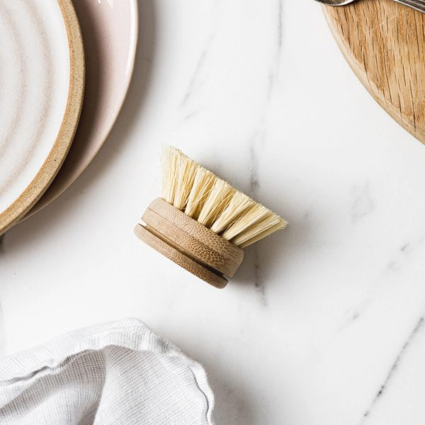 Ever Eco Dish Brush Replacement Head
